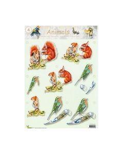 Animals 3D vel Eekhoorn-Vogel 04_small
