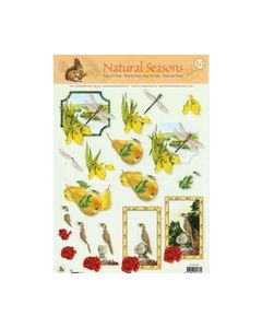 Narural Seasons 50 Liebelle vogels kikker peer_small
