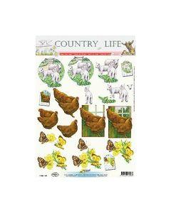 Hobbypost Country kip haan koffie Geit 11053-318_small