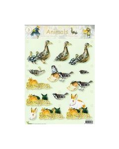 3D Vel Animals 03 Vogels_small