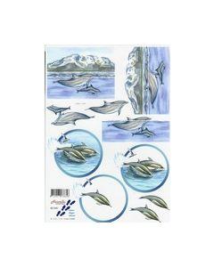 3D Vel Nouvelle 821541 Dolfijnen_small
